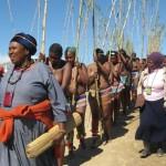 04 Iintombi of KwaBhaca Kingdom at Umkhosi wokukhahlela 2012 - kundlunkulu, eNcunteni
