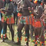 Iintombi of KwaBhaca Kingdom at Umkhosi wokukhahlela 2012 - amamboza