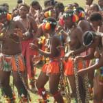 Iintombi of KwaBhaca Kingdom at Umkhosi wokukhahlela 2012 - bhaca dance