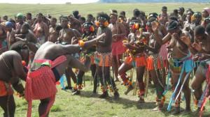 Iintombi ta KwaBhaca Kingdom kumkhosi wokukhahlela 2012 – Bhaca Maidens