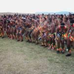 Umkhosi wokukhahlela - Bhaca Royal Reed ceremony - Elundzini Royal Residence, KwaBhaca (11) - Bhaca Maidens