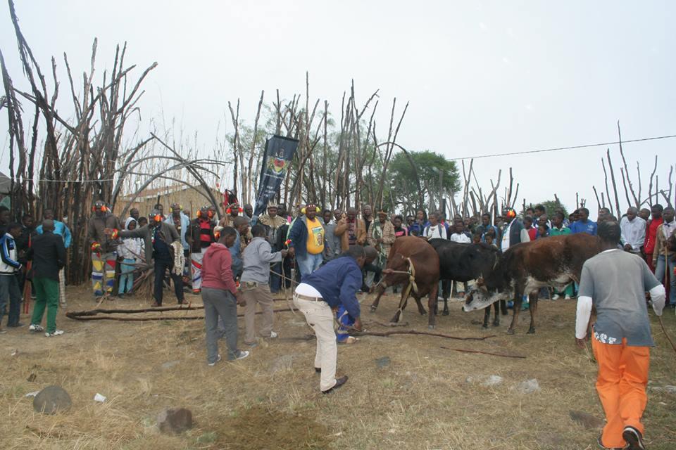 Umkhosi wokukhahlela – Bhaca Royal Reed ceremony – Elundzini Royal Residence, KwaBhaca (2) – Bhaca Maidens