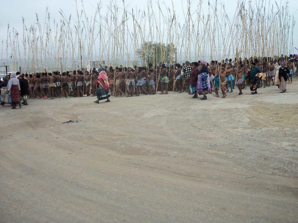 Umkhosi wokukhahlela – Bhaca Royal Reed ceremony – Elundzini Royal Residence, KwaBhaca (3) – Bhaca Maidens