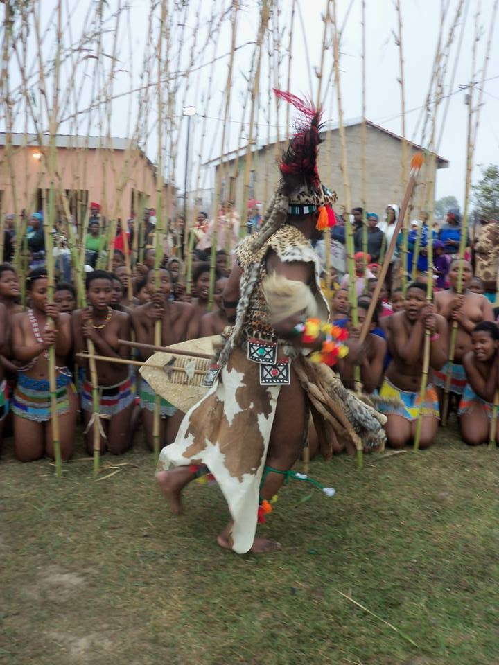 King Madzikane II dancing in front of the Bhaca maidens at Umkhosi wokukhahlela 2014 in Elundzini Great Place, Ncunteni village, Mount Frere